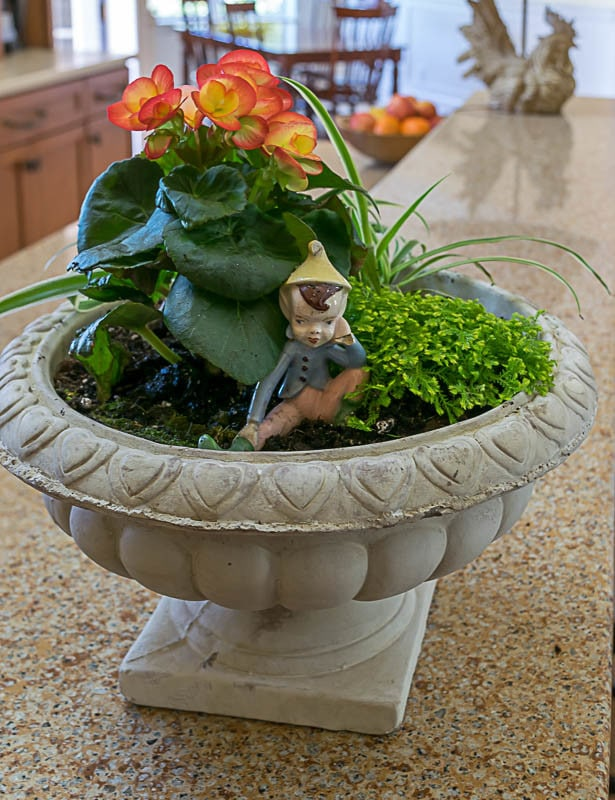 Create an indoor container garden, using the the 'thriller, filler and spiller' method of container gardening. An easy DIY for seasonal home decor.