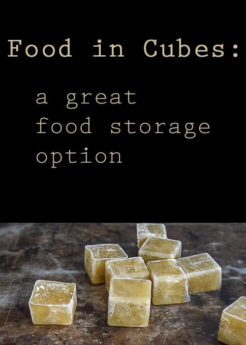 Food storage is made simple when you freeze your broth, pastes, & sauces in cubes.