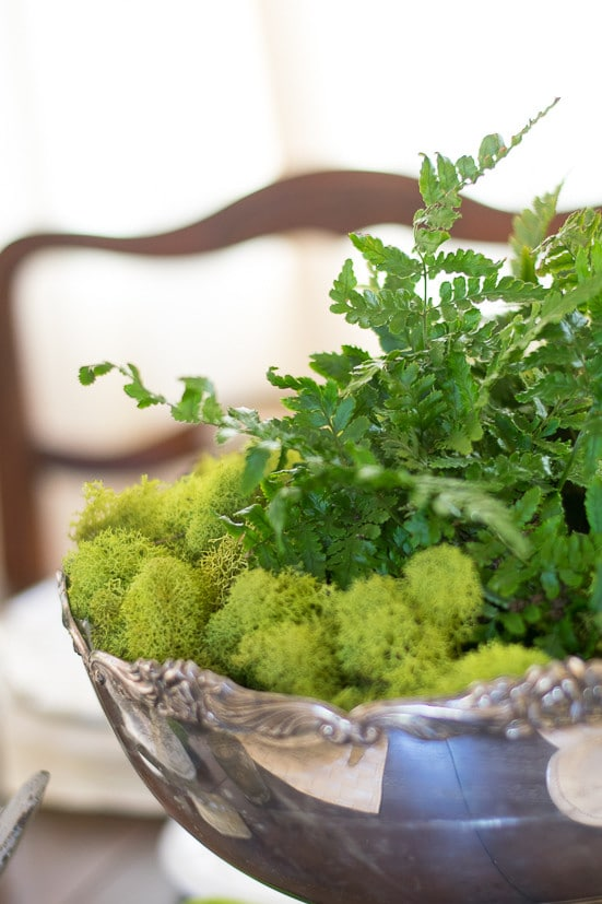 Spring Table Decor: Moss and fern-filled Silver punchbowl makes spring centerpiece