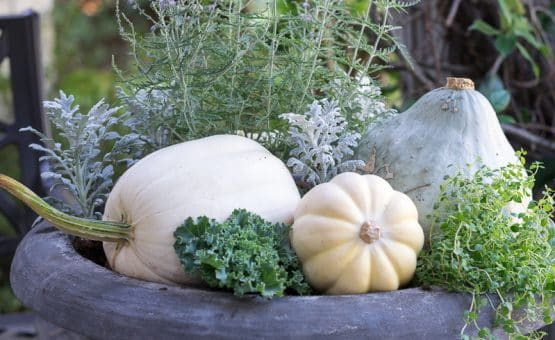 Gray, Green and White Container Gardens for your Fall Front Porch.