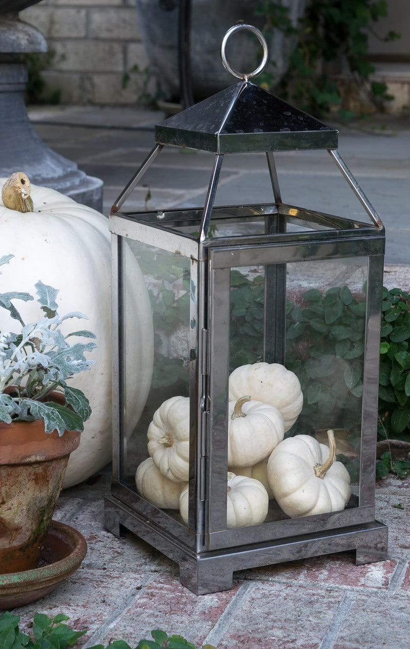 White mini-pumpkins for fall front porch.