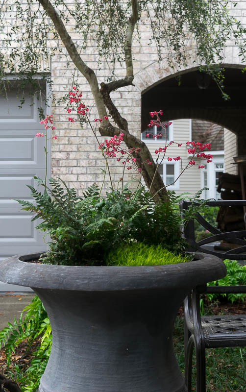 Spring Container Garden Ideas: container garden images, plant combinations and helpful planting ideas